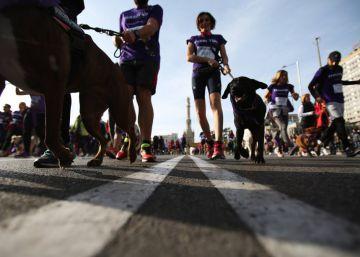 Varios miles de personas participan con sus perros en una carrera solidaria por el centro de Madrid