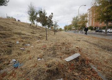 Manolito Gafotas quiere un parque limpio donde jugar
