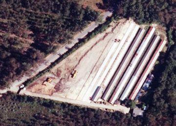 La Xunta tramita la legalización de nueve naves de cría de visones
