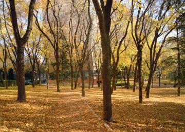 Los otros parques de Madrid