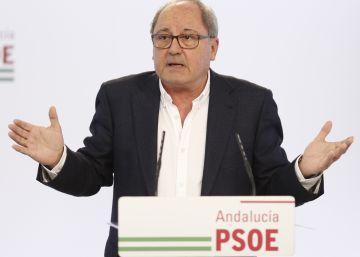 El PSOE andaluz cree que habrá varios candidatos a las primarias