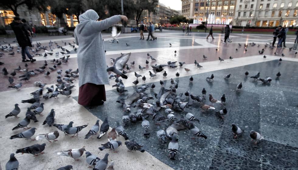 Una mujer alimenta palomas en la plaza Cataluña de Barcelona