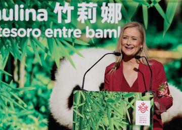 El PP retira preguntas del pleno para que Cifuentes asista al bautizo de un panda gigante en el zoo