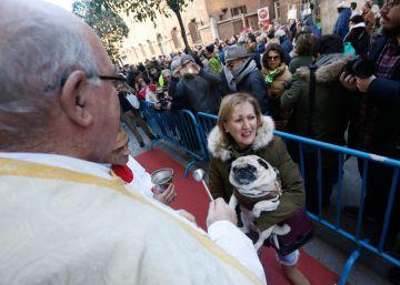 Madrid celebra un san Antón muy animal