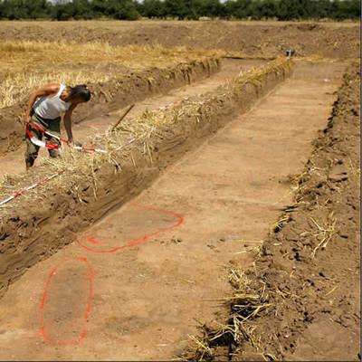 Hallado un 'Stonehenge' de madera de 4.000 años en Alemania