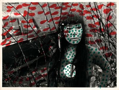 FOTOGALERIA: 'Auto-obliteración'