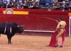 El Cid se aprovecha en Valencia de la nobleza de sus toros