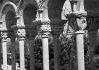 El claustro de Palamós espera veredicto científico
