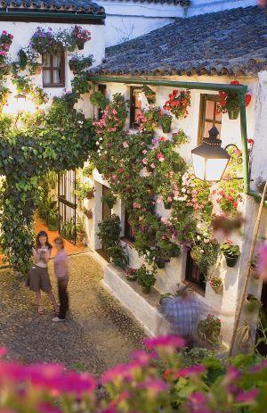 Geranios y enredaderas adornan un patio en la calle de San Basilio en el barrio de la judería de Córdoba, en una imagen de archivo.