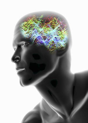 El cerebro humano es el objeto más complejo del que tenemos noticia.