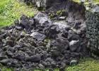 Pompeya agoniza, entre lluvias y tres nuevos derrumbes