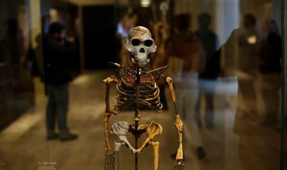 El nuevo Museo Arqueológico se presenta 1395854894_474110_1395928640_sumario_normal
