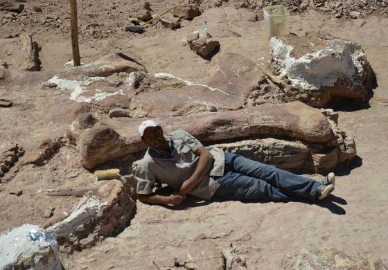 El paleontólogo José Luis Carballido, con el fémur que descubrió.