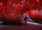 Las mujeres copan la Bienal de Venecia