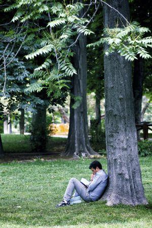 Un lector en el Parque del Retiro, de Madrid, en la pasada Feria del Libro.