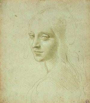 Leonardo Da Vinci y Miguel Ángel en México