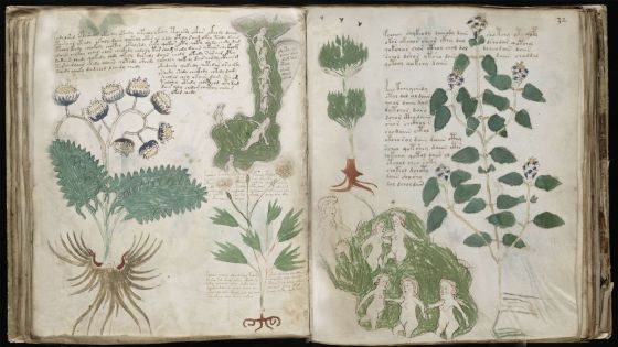 Imagens do \'Códice Voynich\'.
