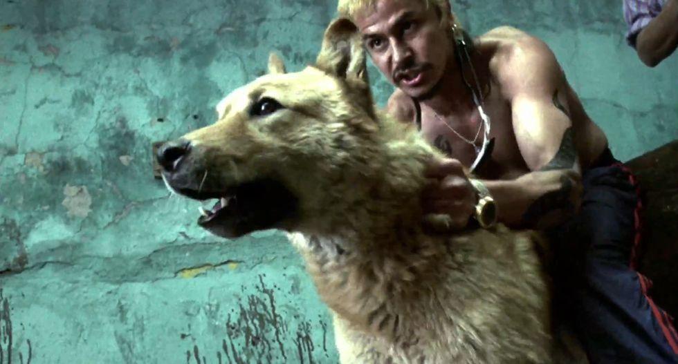 Un fotograma de 'Amores Perros' de Alejandro González Iñárritu.
