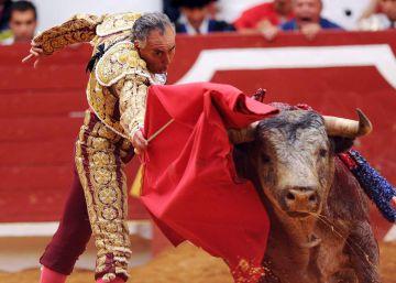 Bullfighter left tetraplegic succumbs to injuries