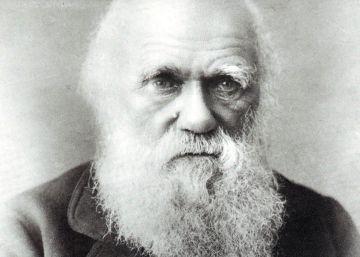 El FBI recupera una carta de Darwin robada por un becario