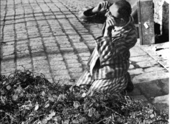 Auschwitz rescata más de 16.000 objetos personales de prisioneros