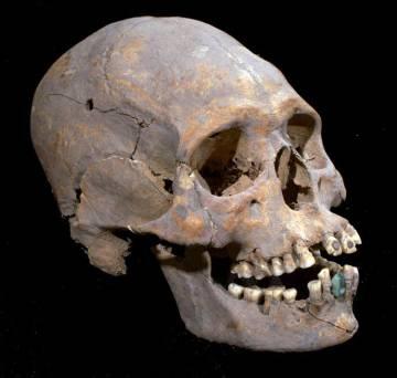 Perfil cráneo encontrado en Teotihuacán