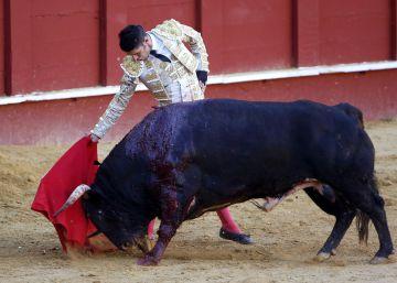 Morante, abroncado de nuevo en Málaga y Talavante corta una oreja