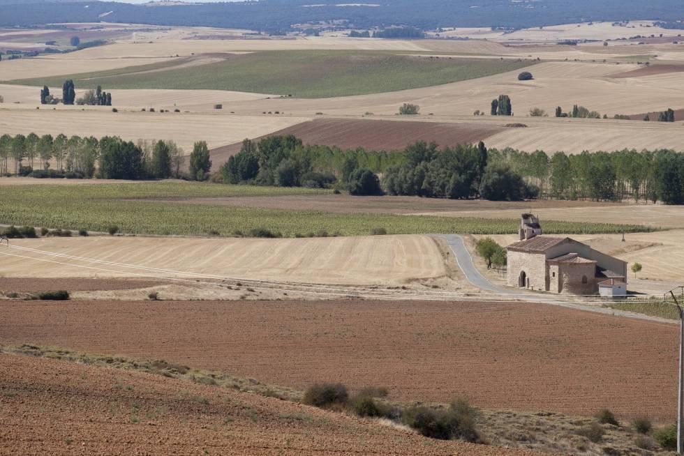 Alrededores del municipio de Fresno de Cantespino (Segovia), en la zona donde se halla la necrópolis de Castiltierra.