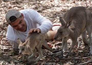 'Wild Frank', en busca de la serpiente taipán en Australia