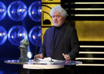 Almodóvar presenta el Goya de Honor en la gala de los premios de 2015.