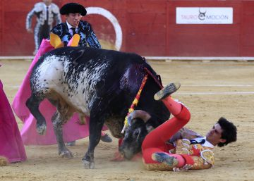 Admitida la querella contra quien vejó la memoria del torero Víctor Barrio