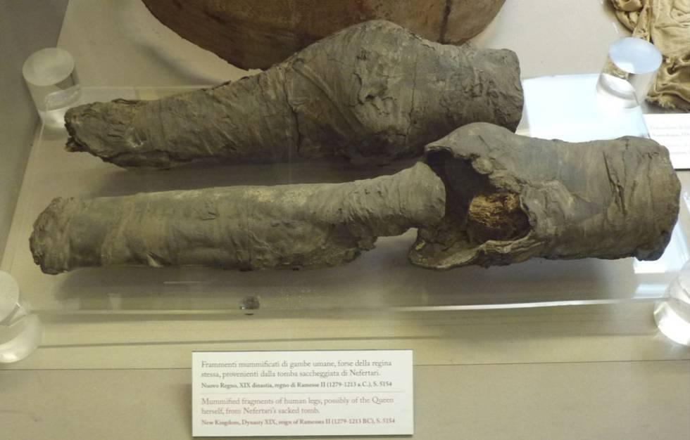 Los restos momificados de las piernas de la reina Nefertari