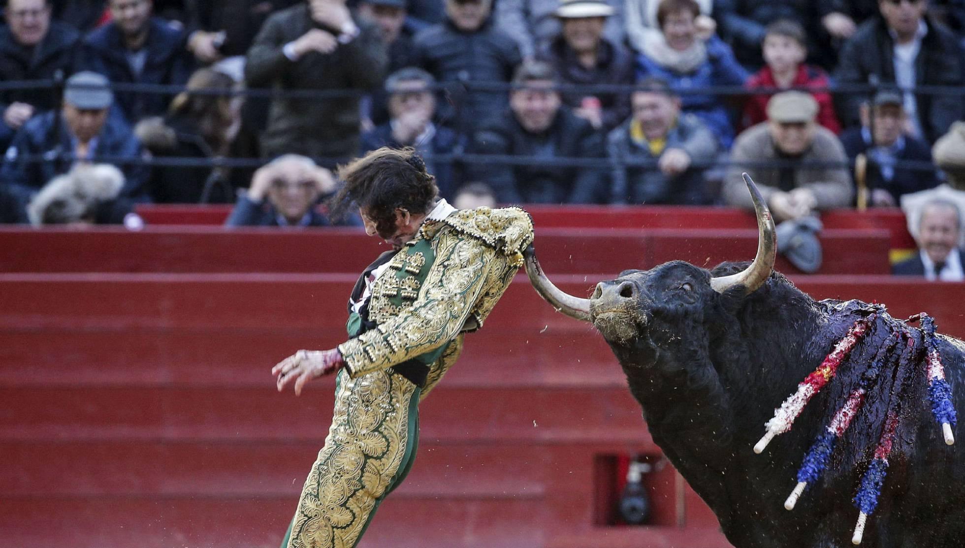 Torero recibe brutal ataque de un toro en Valencia