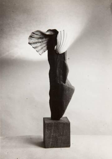 'Ave cabría' (1945), fotografía de Ángel Ferrant.