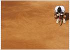 Davydenko cita a Nadal en semifinales, Ferrer a González