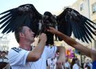 Los focos de la Eurocopa