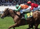 La Federación de Hípica será el nuevo regulador de las carreras