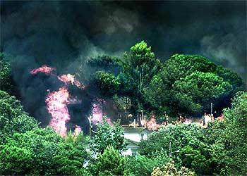El incendio de ma anet quema casas corta la autopista a francia y desata el p nico edici n - El tiempo en macanet de la selva ...