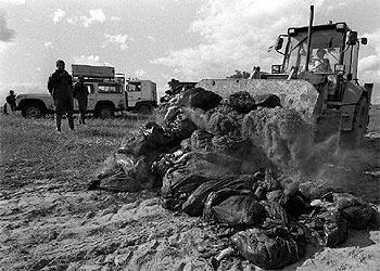 Trabajadores de la Junta de Andalucía, con sacos de peces y cangrejos muertos por el vertido de 1998.