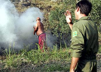 Luchando contra el fuego desde la tierra y el aire
