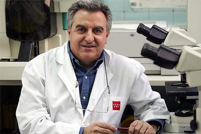 Jorge del Romero, director del Centro Sandoval.