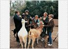 El disco que desafió a los Beatles