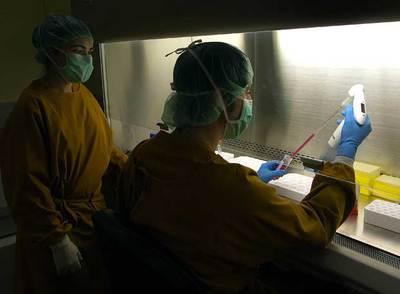 Laboratorio de investigación con células madre del Centro de Medicina Regenerativa de Barcelona.