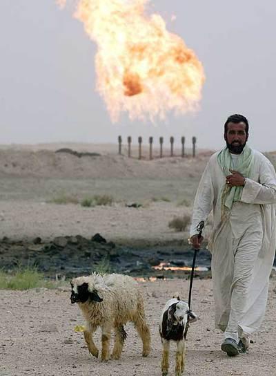 Un hombre con sus ovejas cerca de una planta de gas en Irak.