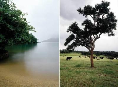 Dos de las imágenes del fotógrafo brasileño que se muestran en la galería Joan Prats.