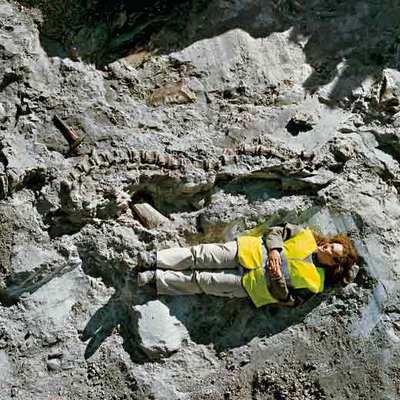 La paleontóloga Begoña del Moral (en la foto), junto a parte de la cola, que podía medir hasta seis metros, y pata de un titanosaurio.