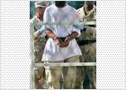 El Pentágono pide la pena de muerte para seis presos de Guantánamo