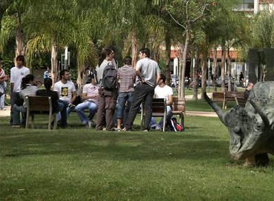 Un grupo de estudiantes en el campus de Vera de la Universidad Politécnica de Valencia.