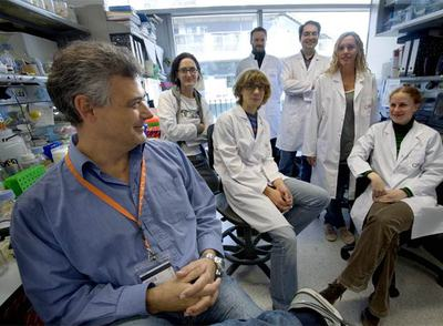 El investigador Luis Serrano, con su equipo, en el laboratorio del Centro de Regulación Genómica de Barcelona.