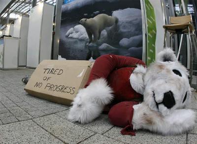 Un oso polar de peluche en la cumbre de Poznan muestra su cansancio por la falta de progresos.